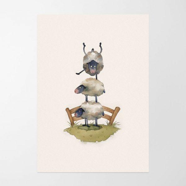 sheep-1-897x908